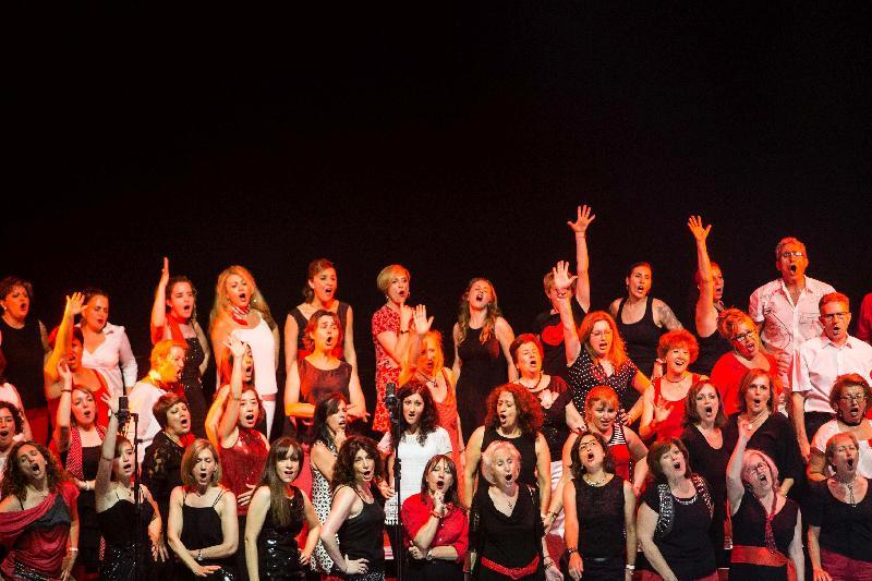 El Musical participativo Obra Social la Caixa 05